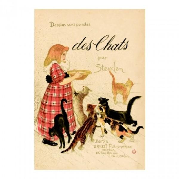 262. илюстрация към книга. 1898