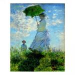 348. Жена с чадър